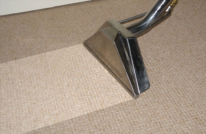 Carpet Cleaning for Sticklers