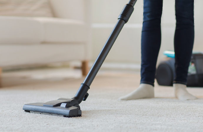 Cleaning Carpets the Pet-Friendly Way