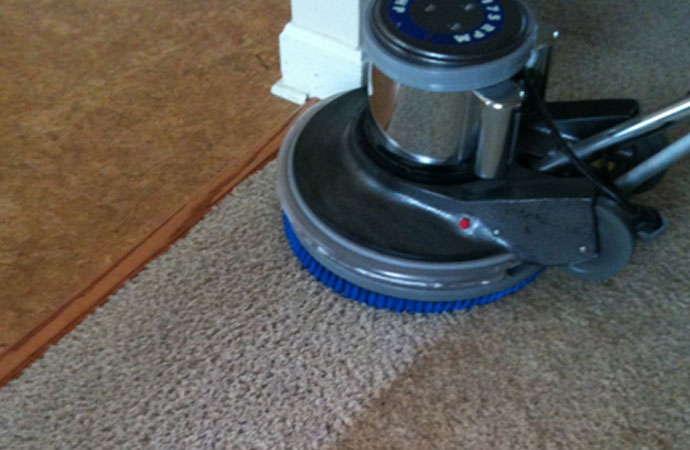 Wet vs. Dry Carpet Cleaning