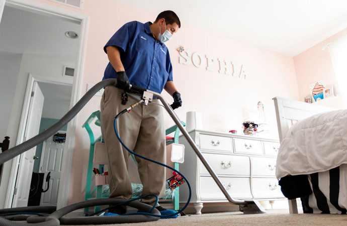 The Best Carpet Cleaning Services in Catonsville, Maryland