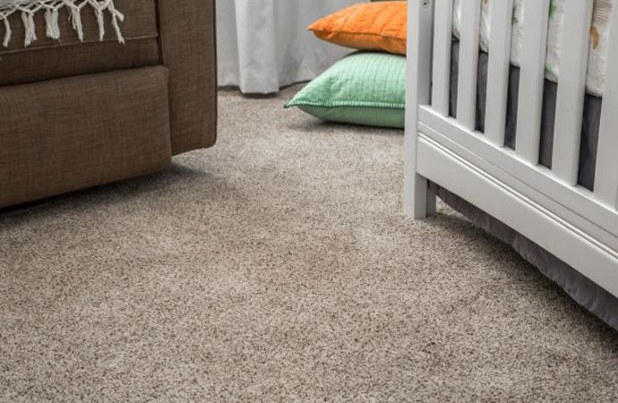 Best Carpet Cleaning Services In Pikesville