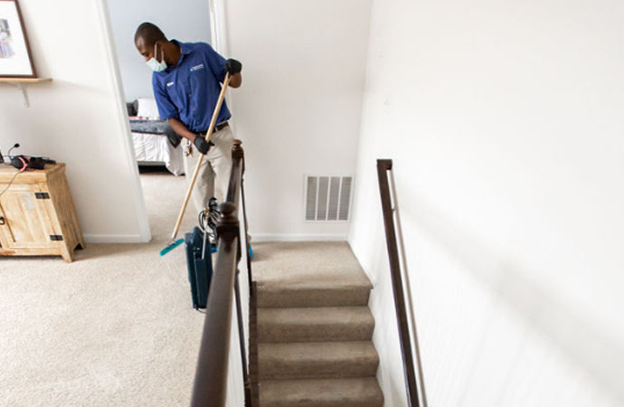 Why Do You Need Carpet Cleaning?