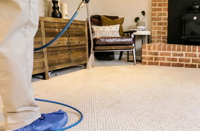 Why Should You Choose Carpet Cleaning