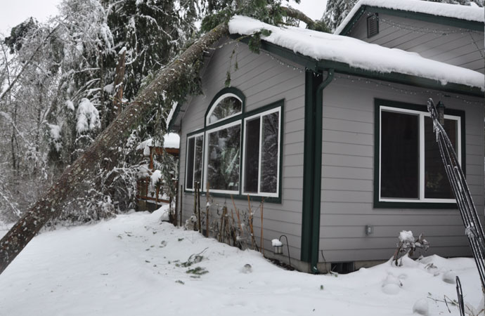 Winter Storm Damage Restoration